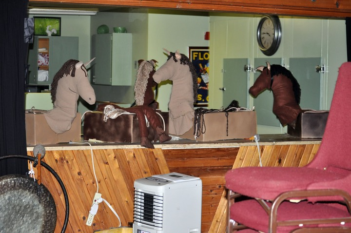 FB Horses on the counter